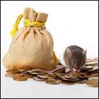 мыша на деньгах