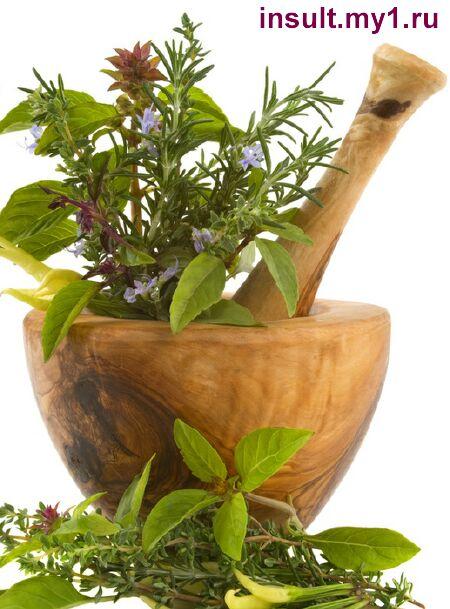 фото - лекарственные травы